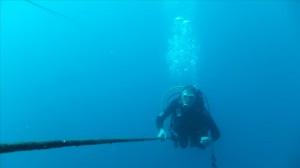 Fuerteventura Pfingsten2015(14)